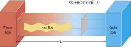 Thermal physics notes